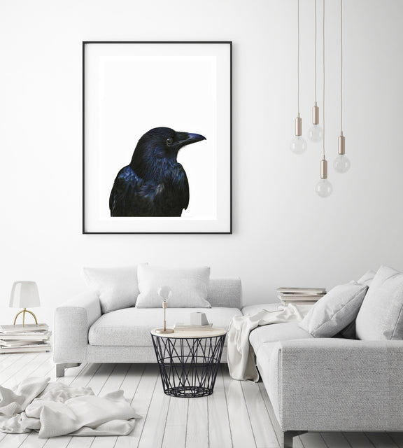 crow extra large art print for modern wall decor