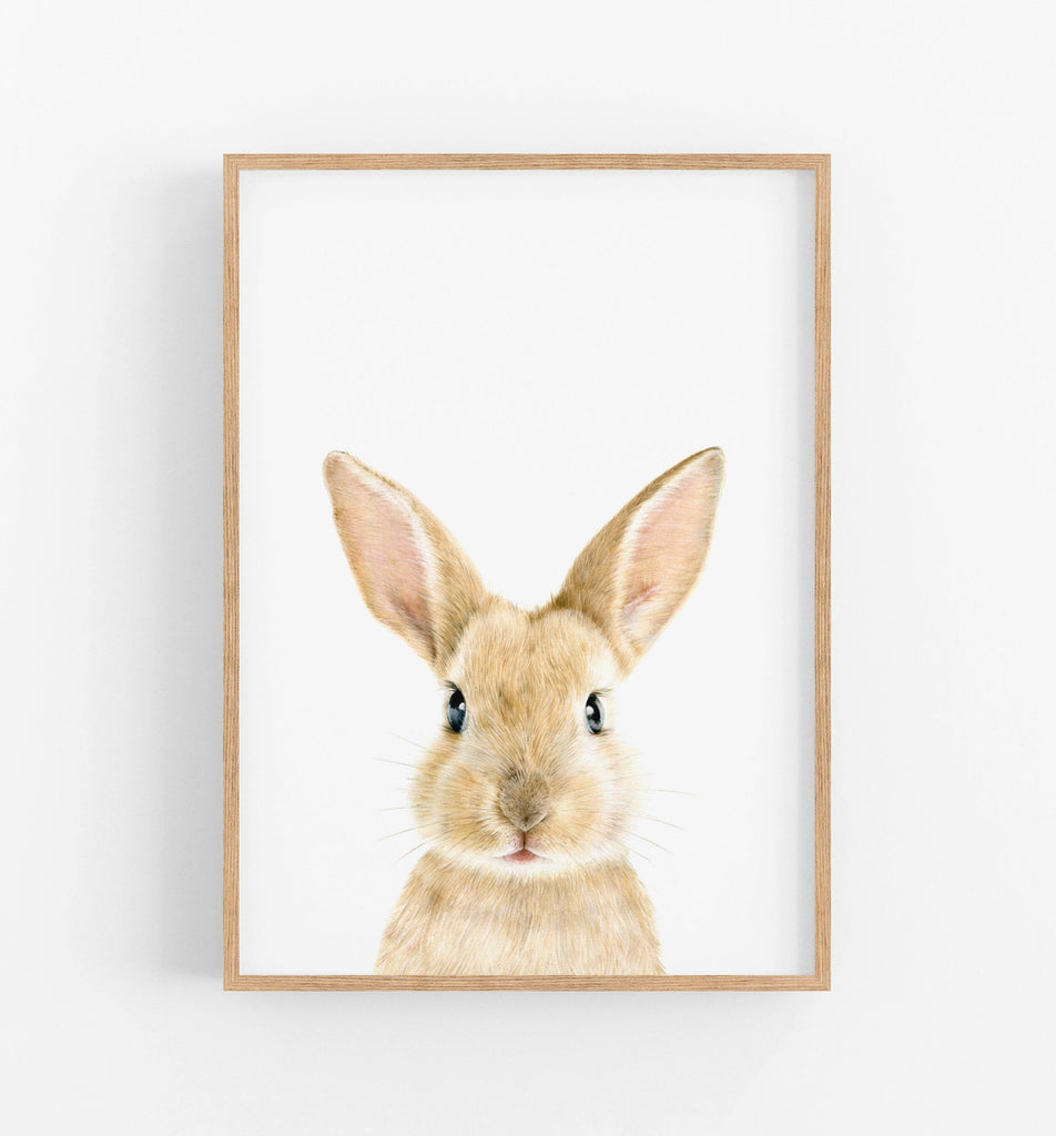 illustration of a rabbit in a teak frame