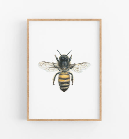 Bee Art Print - the wild woods