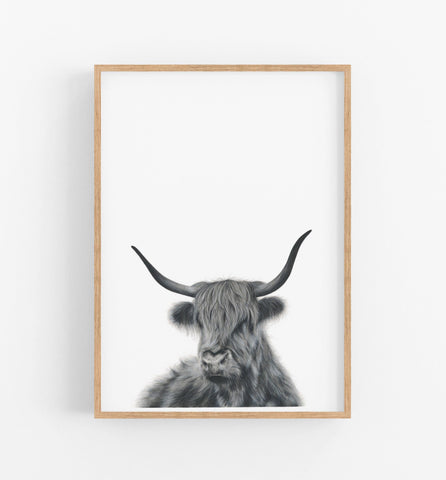 black and white highland cow art print
