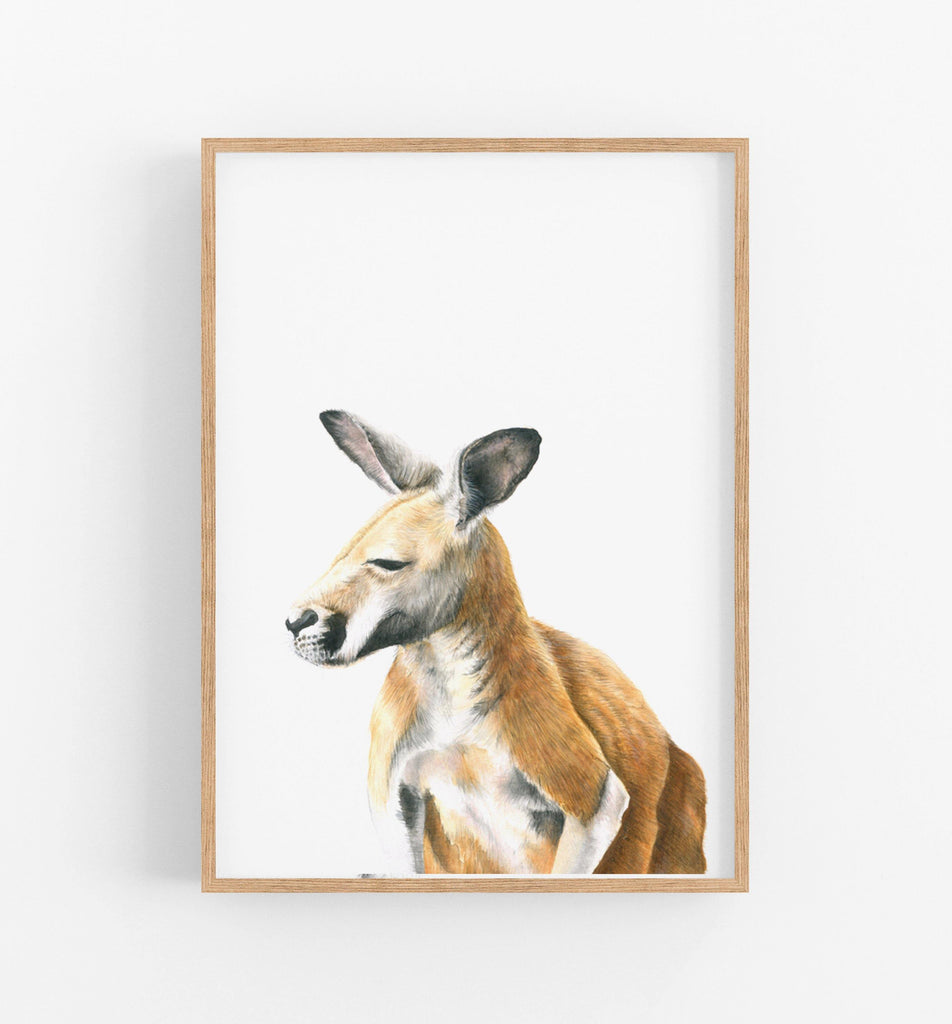 Australian animal art prints