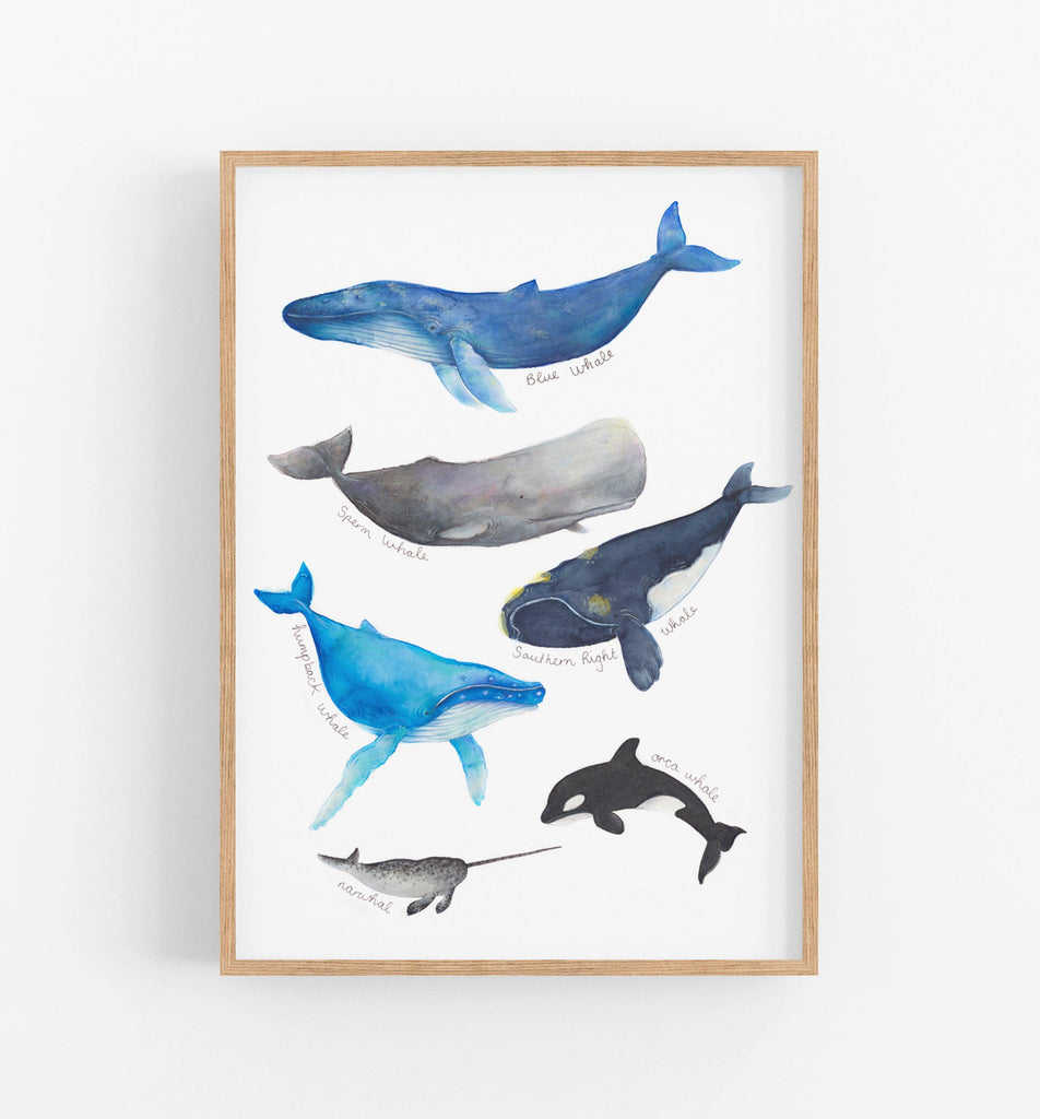 Whale Art Print - the wild woods