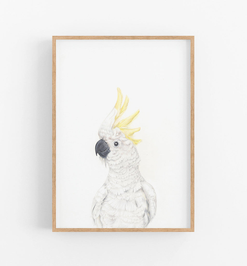 white cockatoo wall art print