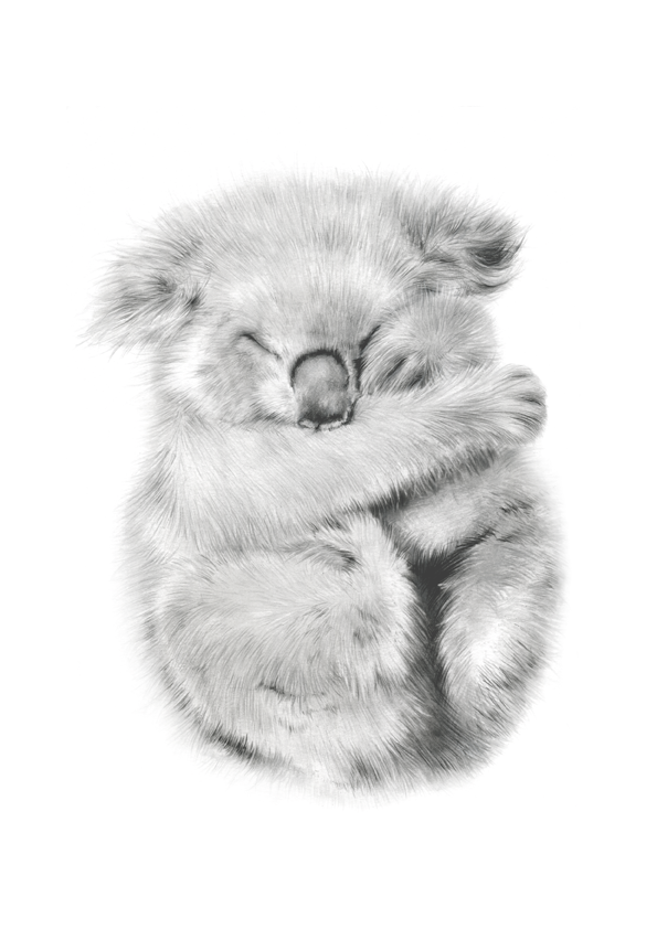 Koala nursery wall art prints