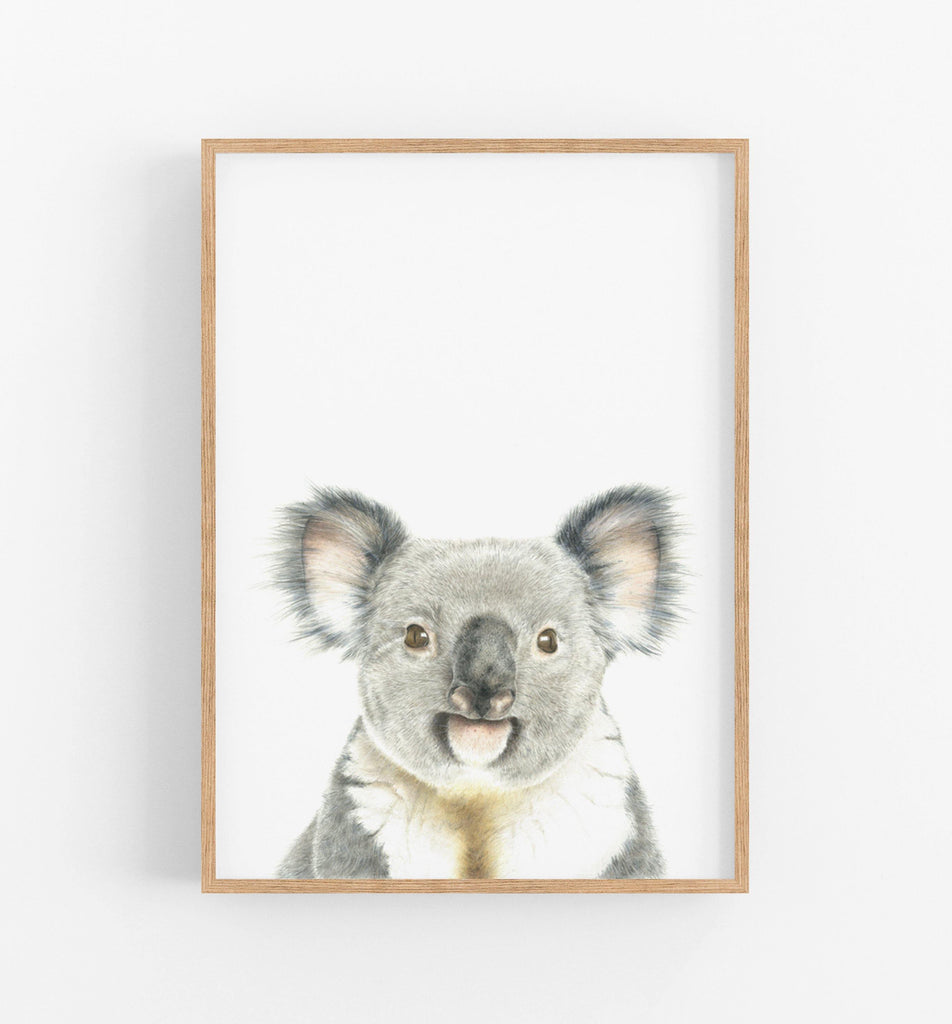 Koala Bear Art Print - the wild woods