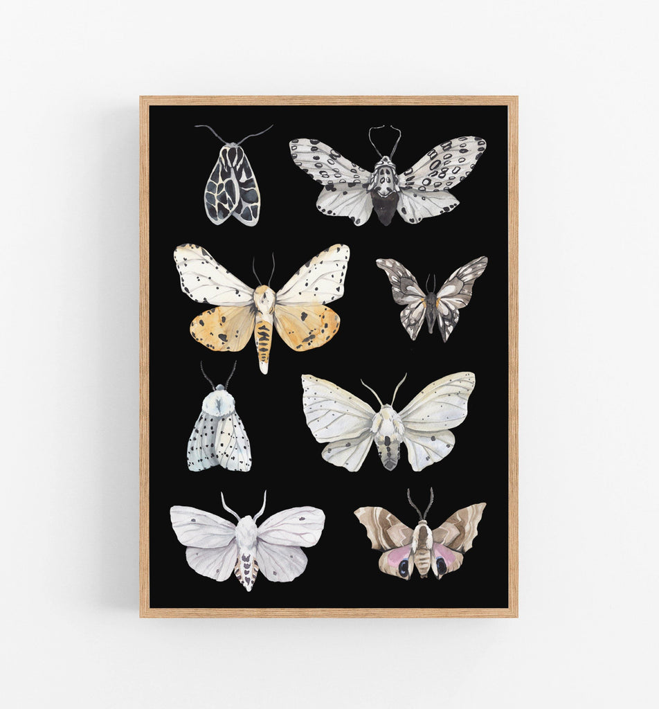 watercolour butterflies on a black background in a teak frame