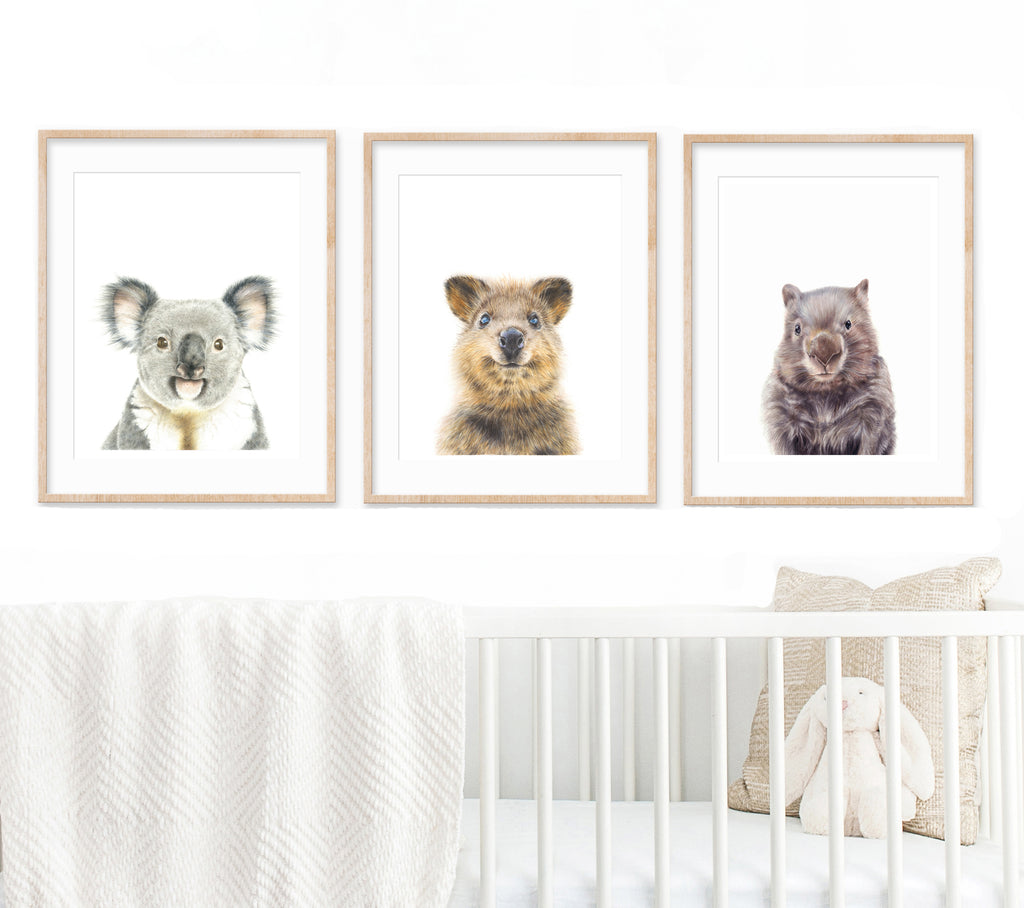 Set of 3 Australian animal Prints hanging above a white cot