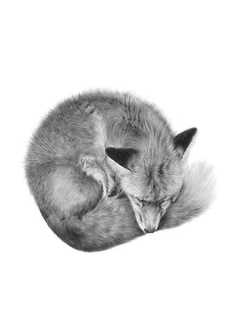 fox nursery wall art prints