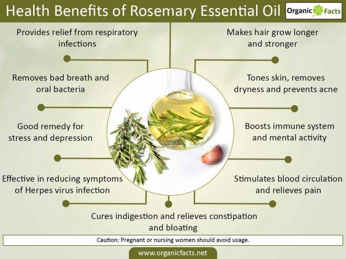 Herbal Choice Mari Organic Rosemary Essential Oil; 0.3floz Glass - Herbal Choice Mari Organic Rosemary Essential Oil; 0.3floz Glass - Herbal Choice Mari Organic Rosemary Essential Oil; 0.3floz Glass