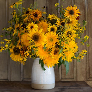 Favorite Sunflowers for Cutting