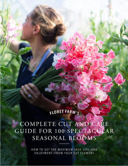 Floret's Complete Cut & Care Guide