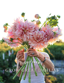 Grow Great Dahlias