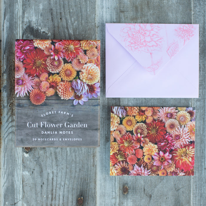 Greeting Cards Dahlias