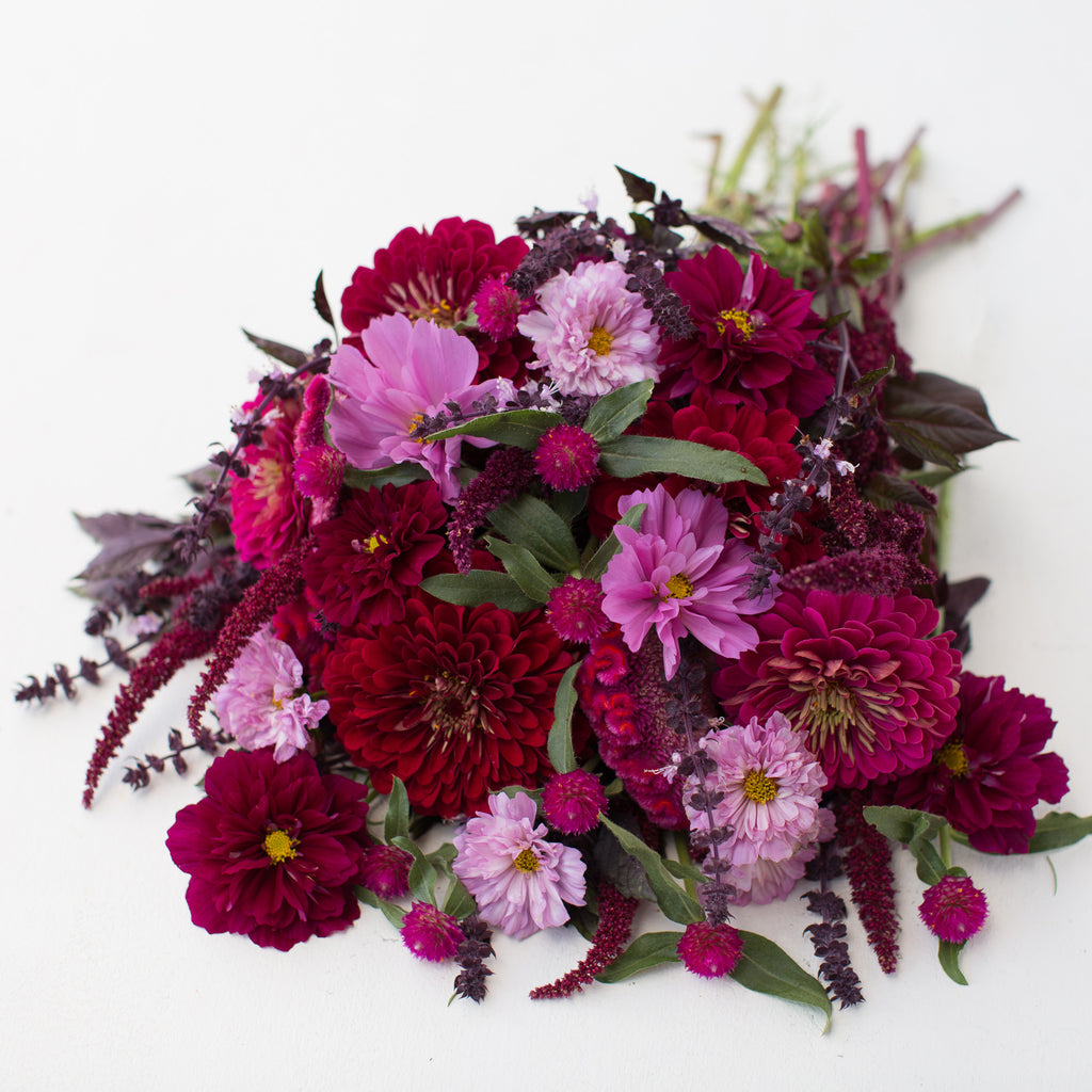 Jewel Tone Wedding Flowers: Seed Collection Jewel Toned Mix