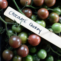 Tomato Chocolate Cherry