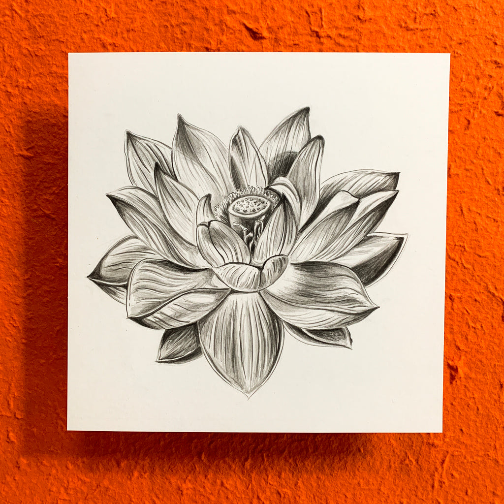 Lotus Graphite Original Drawing
