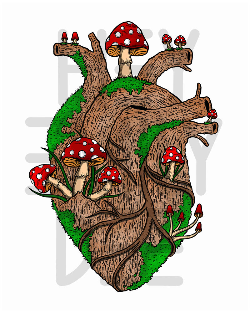 Anatomical Heart (Set of 4 Prints)