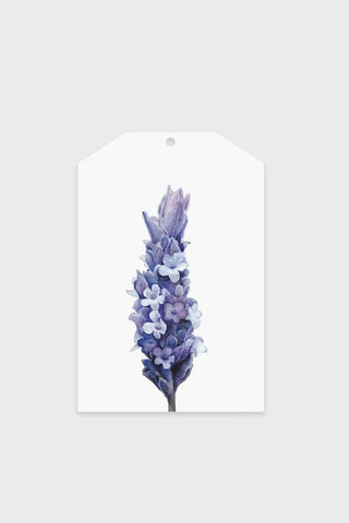 Gift Tag - Lavender