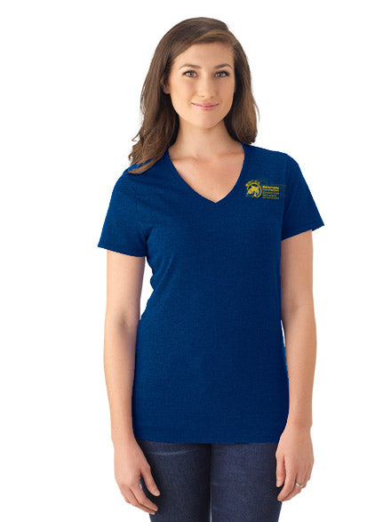 Tri-Blend V-Neck Tee - Ladies