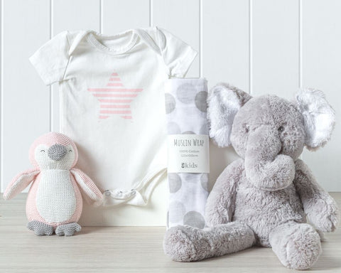 New Beginnings Girl Baby Hamper
