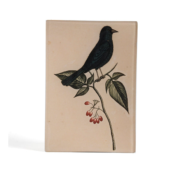 George Edwards Indigo Bunting Tray