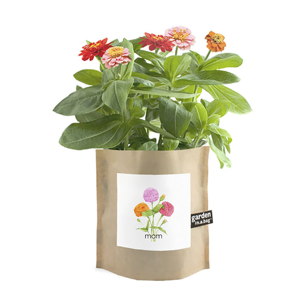 Garden in a Bag for Mom
