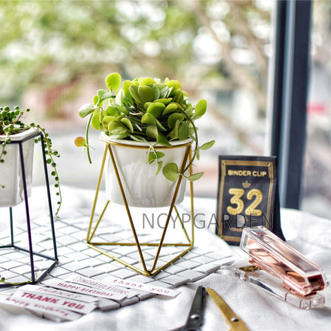 Modern Desktop White Small Ceramic Plant Flower Pot Planter with Geometric Holder for Succulents