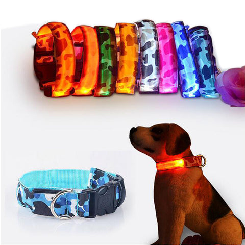Luminous Dog Collar for Night - AwesomeIWantThat.com