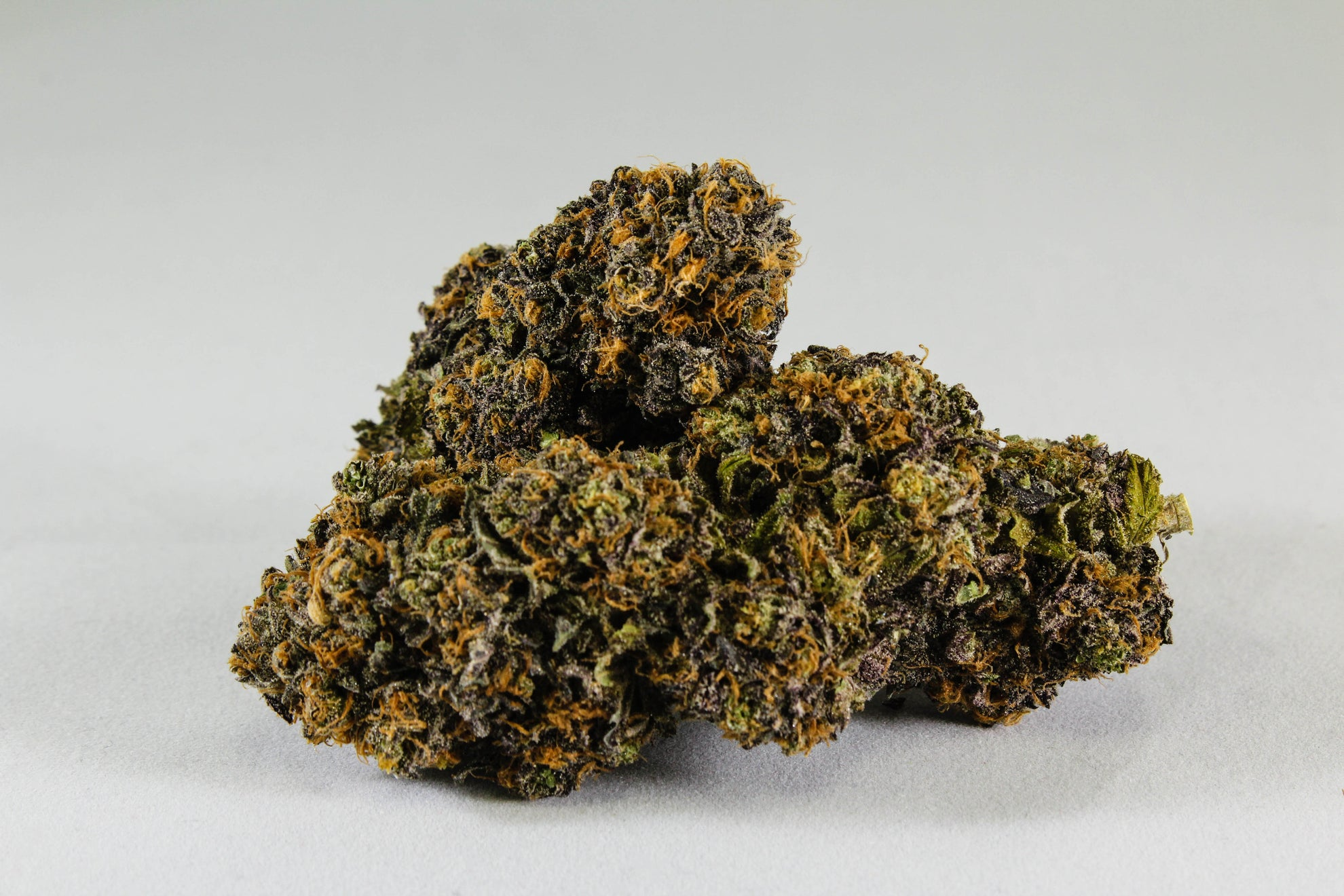 Purple Urkel by Hillside Pharms