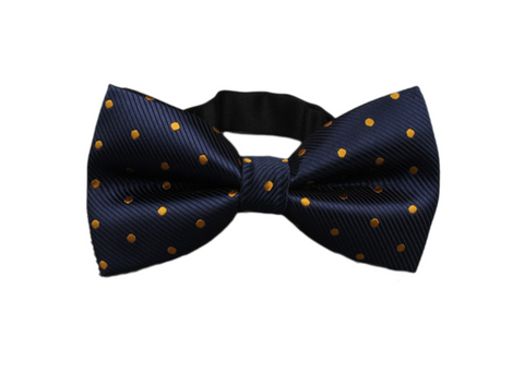 blue and orange dotted bow tie