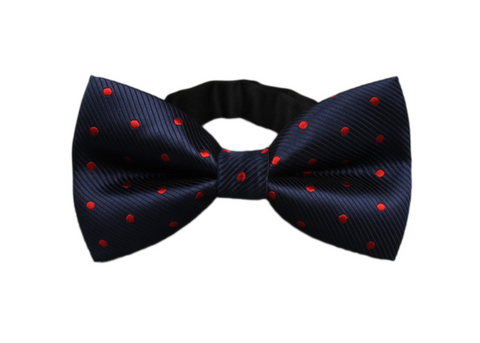 Dark Blue and Red dotted Bow Tie