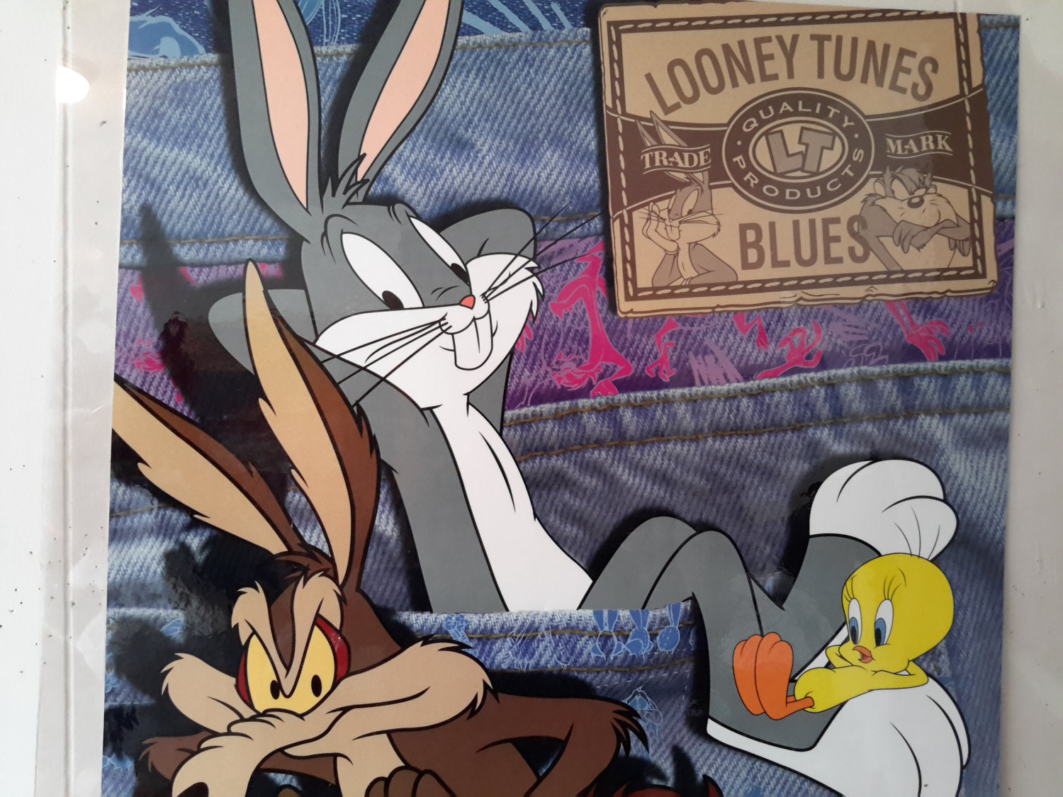 Vintage 90s Looney Tunes Blues Denim Poster Space Jam Original 1996