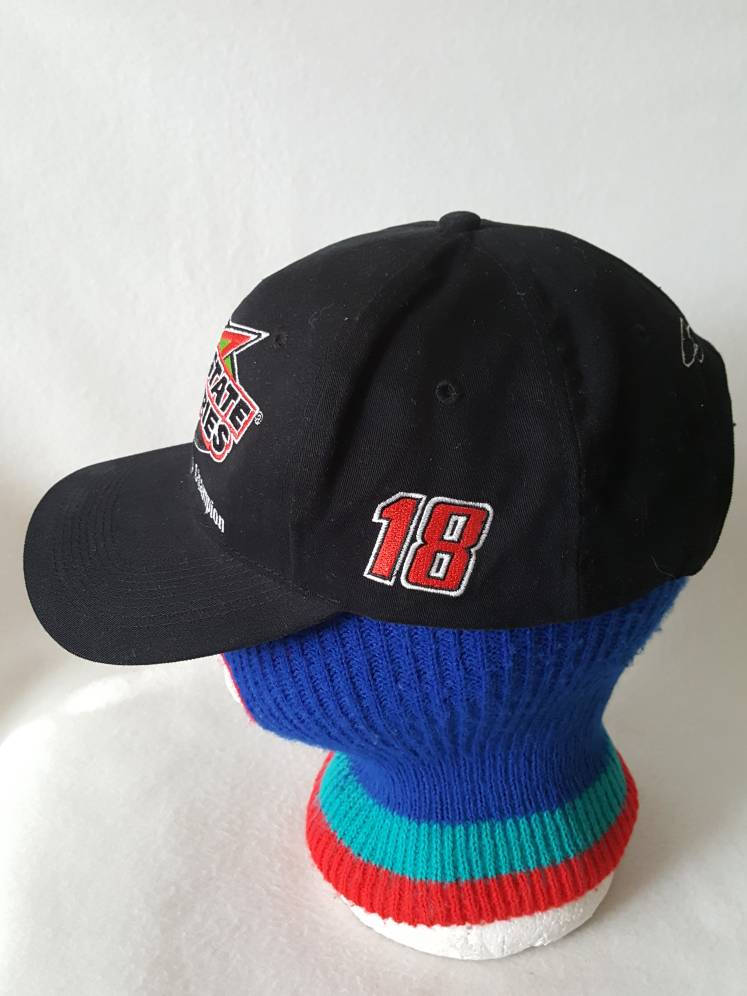 Vintage  Interstate Batteries Winston Cup champion Nascar snapback hat vtg racing  Chase Authentics plain logo
