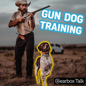 Anthony Ferro: Hunting Dog Training Secrets & Gear