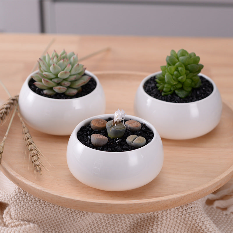 3 Tier Modern White Ceramic Succulent Planters And Bamboo Shelf