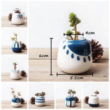 Set of 8 Hand Painted Mini Ceramic Succulent Pots