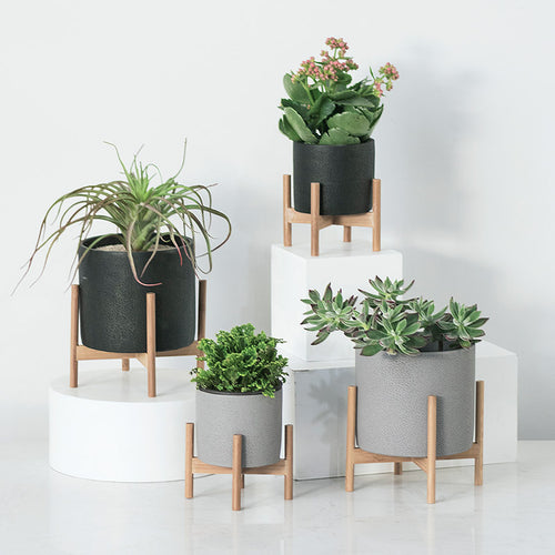 Concrete and Solid Wood Industrial Style Flower Pot and Succulent Planter