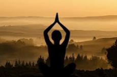 meditative sunset horizon with tree of life yogi silhouette