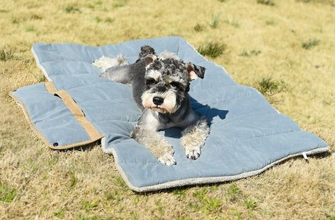 Portable Travel Pet Bed