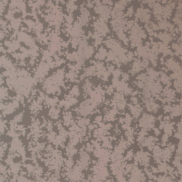 Stucco Wallpaper Blush Pearl on Gunmetal