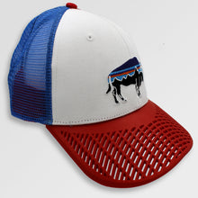 LIMITED EDITION: Patagonia Fitz Roy Bison Trucker Hat