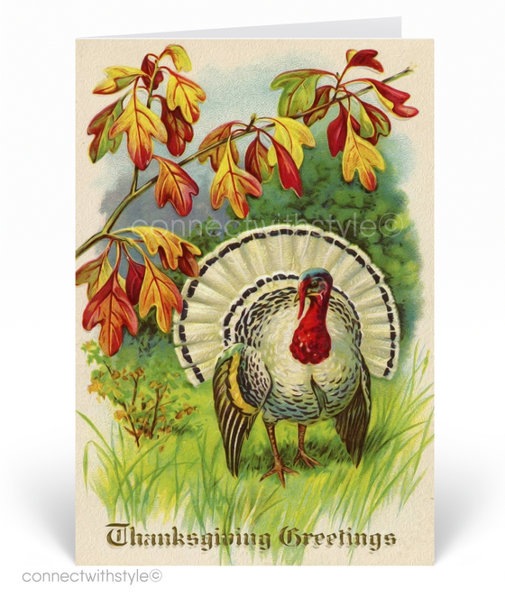 1920's Vintage Autumn Turkey Thanksgiving Greeting Cards