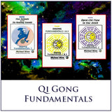 Qi Gong Fundamentals 1 & 2 Home Study Course by Michael Winn