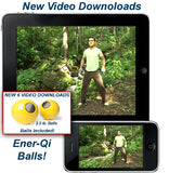 2.5lb Magnetic Ener-Qi Balls (One Pair) - Course Available On DVD or Instant Download