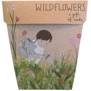 Wildflowers Gift of Seeds
