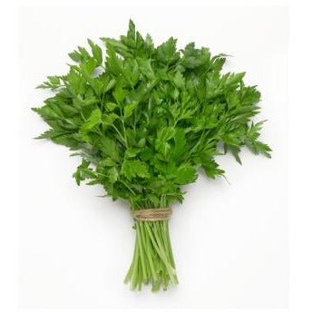 Parsley Continental - Bunch