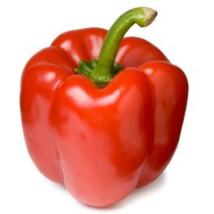 Capsicum Red - Each