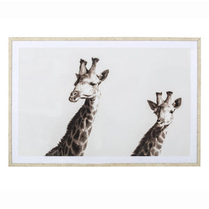 Giraffe Wall Picture