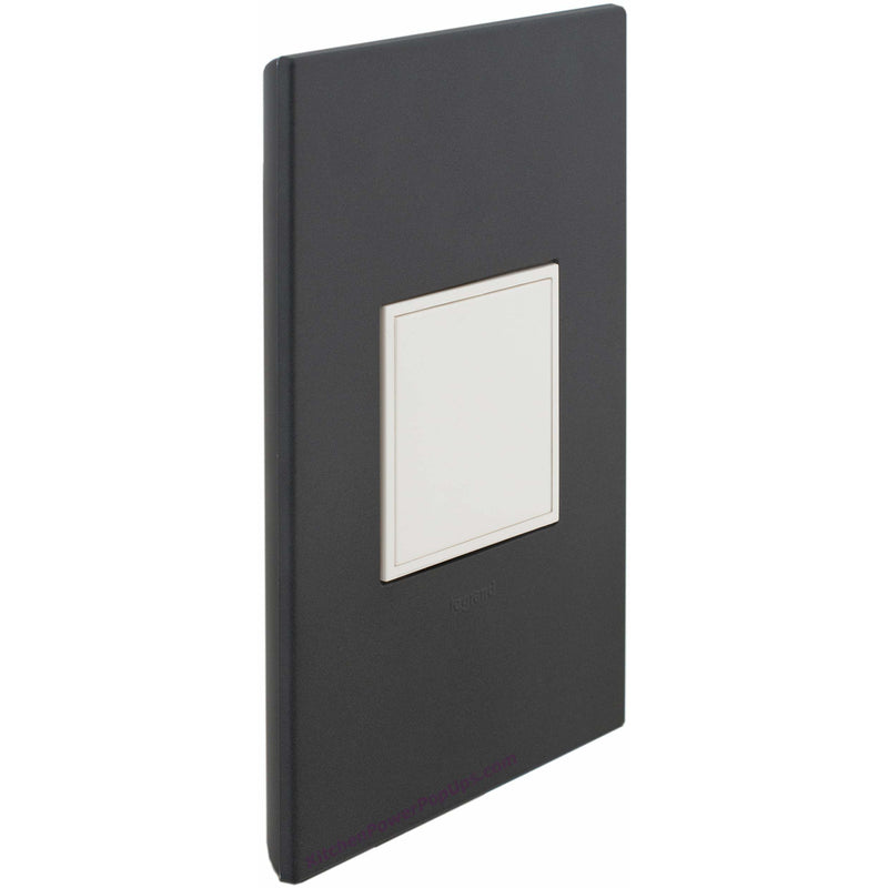 Adorne Pop-Out Graphite Wall Plate and White Outlet - Closed