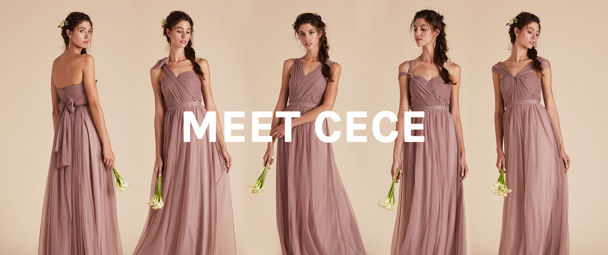 Cece convertible tulle bridesmaid dress birdy grey how to wear birdy greys cece convertible tulle bridesmaid dress ombrellifo Choice Image